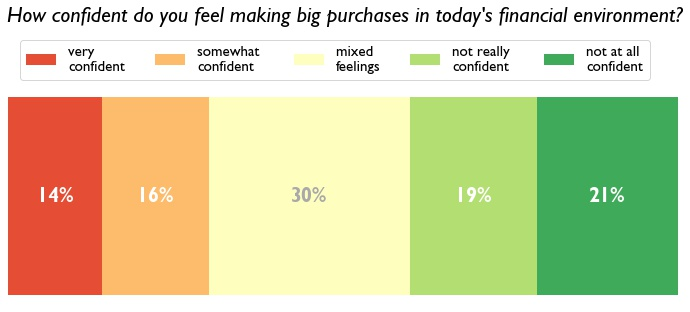 A horizontal stacked bar chart shows the range of emotions from high to low confidence for making larger purchases in today's financial climate.